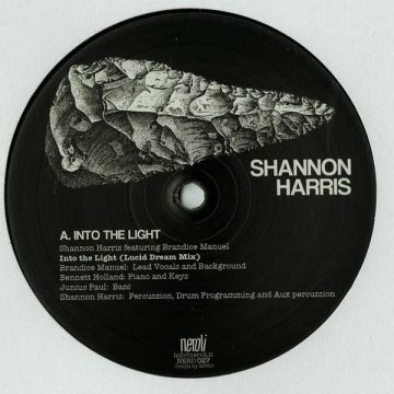 """Shannon Harris vinyl record Into the Light lucid dream mix black cover Side A 12"""""""