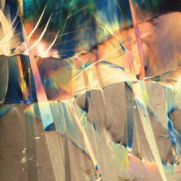 tommaso cappellato pioneered coloured cover vinyl record